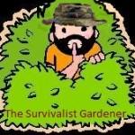 Survivalist Gardener avatar