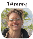 Tammy-Trayer