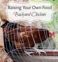 Backyardchickens