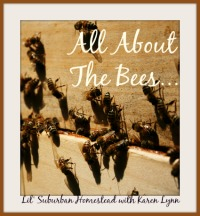All About The Bees - KarenLynn