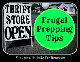 ep24_frugal prepping tips_sharon pannell