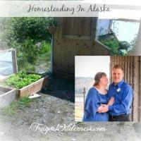 homesteading in alaska with LeAnn Edmondson