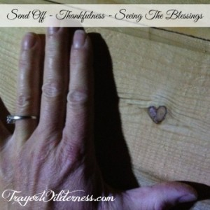 Thankfulness - Seeing The Blessings